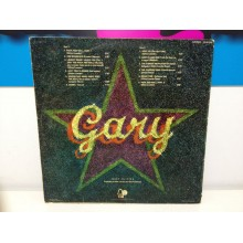 GARY GLITTER ROCK AND ROLL VINILO DE SEGUNDA MANO